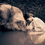 gregory-colbert2