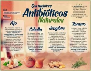 antibiotico natural2