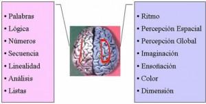 hemisferios2