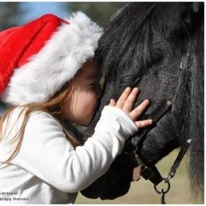 navidad blog1