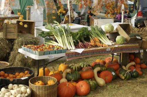 organic20produce