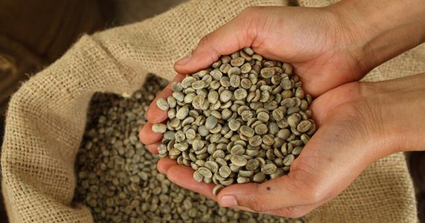 cafe-verde