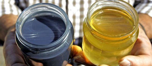 miel-azul-588x257