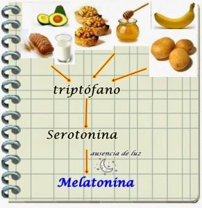 triptofano (1)