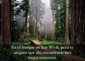 wifi conexion