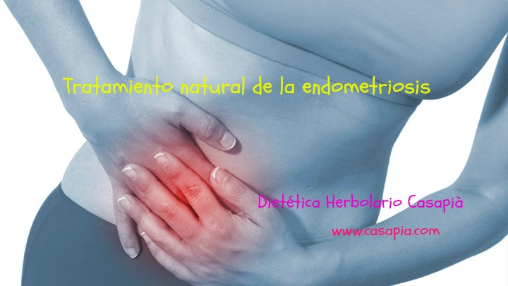 endometriosis1