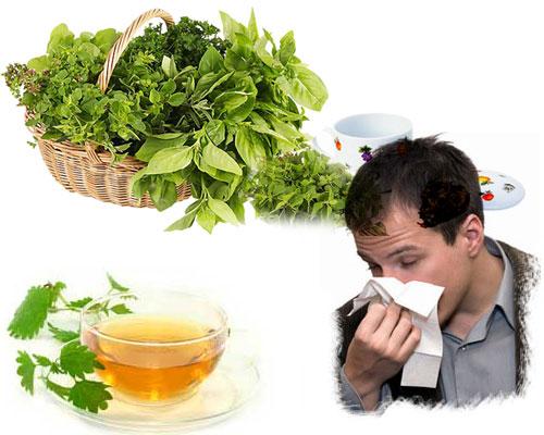 remedio-alergia-casero