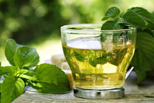 te-de-stevia