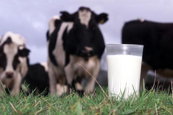 La-leche-ya-no-es-recomendada-ni-requerida-por-los-medicos