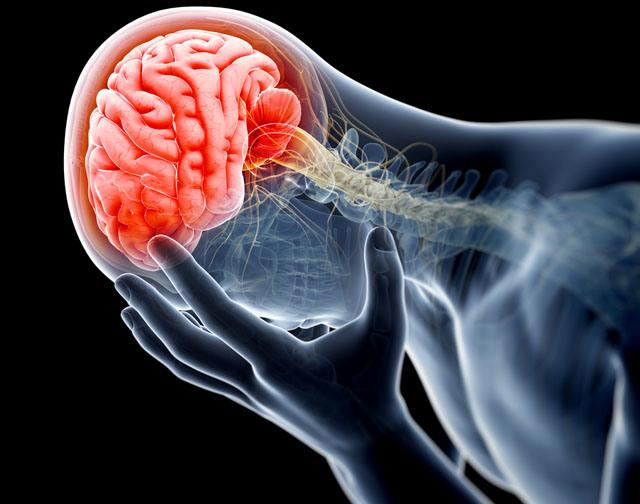 Dolor-y-cerebro