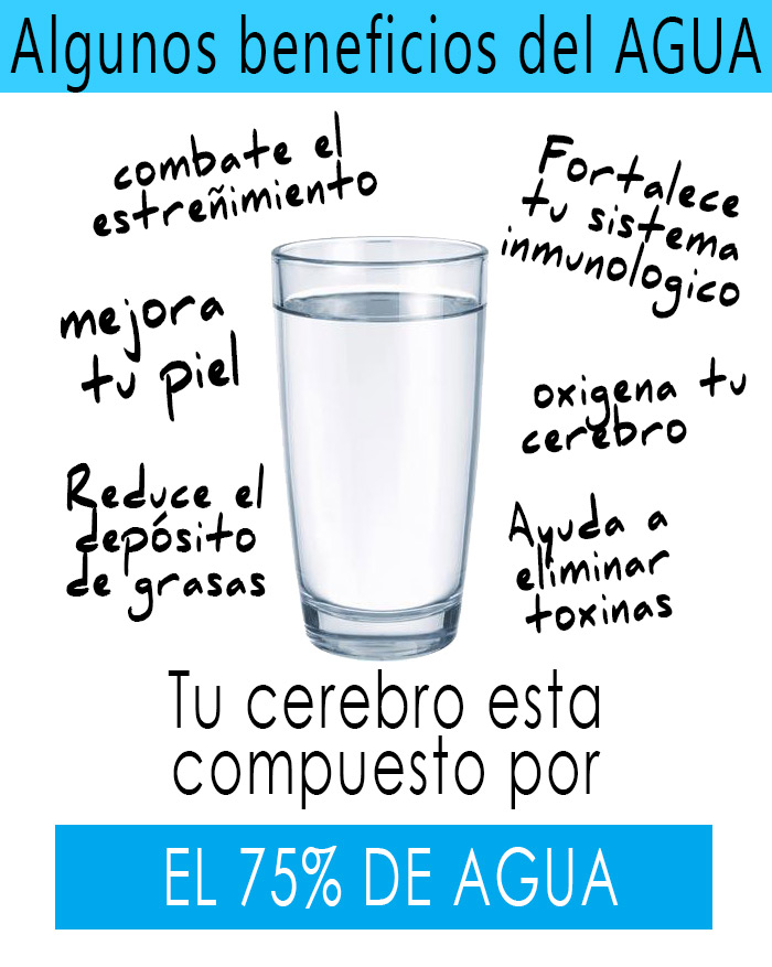 porque-beber-agua