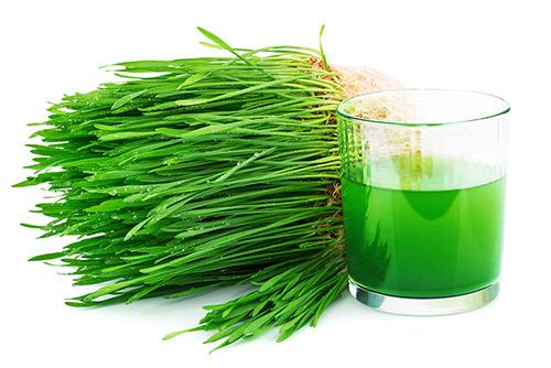 verde_alimentacion_consciente