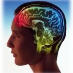 hemisferios0