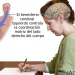 hemisferios4