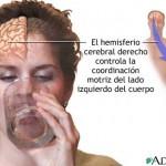 hemisferios5bgif