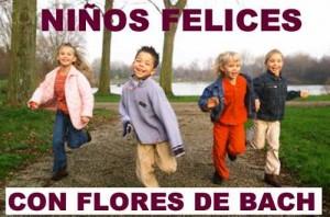 remedios-florales