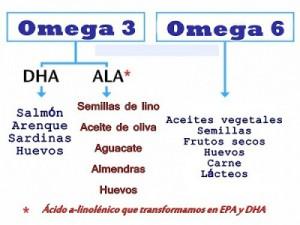 acidos-grasos-esquema