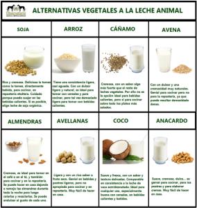 Alternativas-a-la-leche