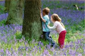 niños en el bosque