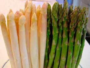 asparagus-esparragos