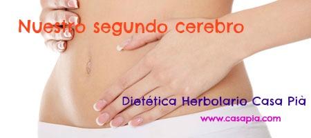 salud-digestiva