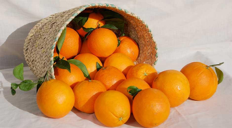 naranjas1472014