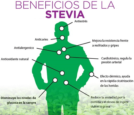 beneficios-stevia