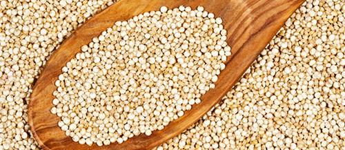quinoa-e1420718237385
