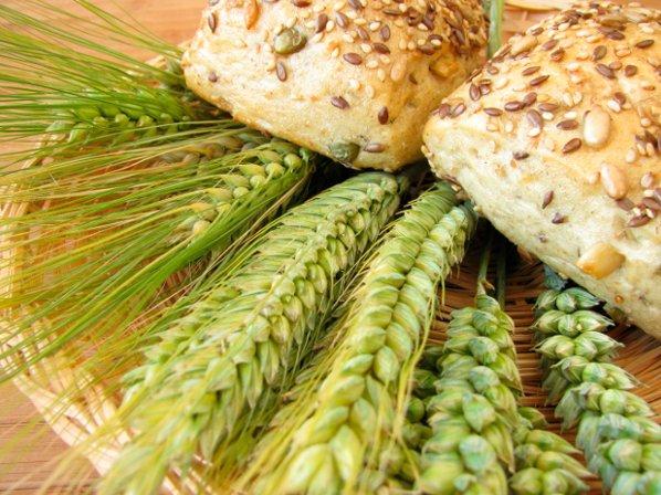 granos-alimentos_anticolesterol-salud40-wp