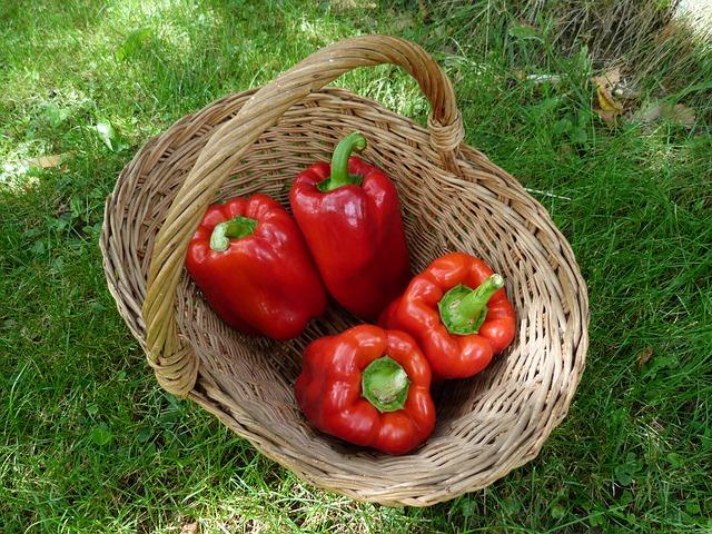 vegetables-392585_640