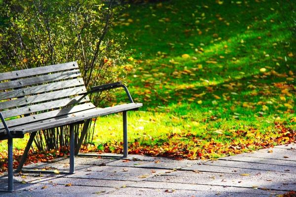 Optimized-wood-bench-241005_1280