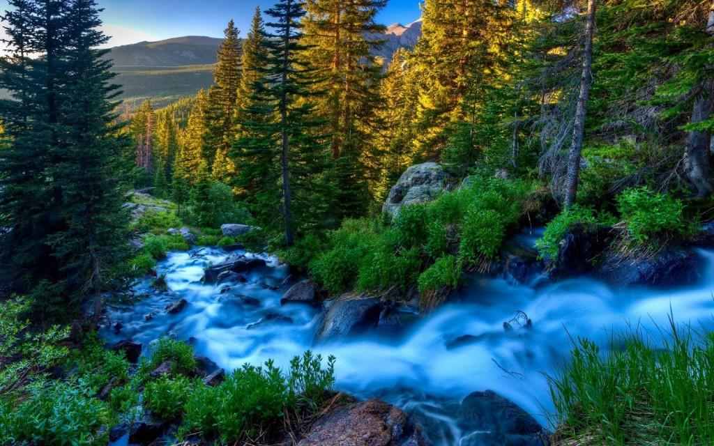 paisajes-naturales-animales-y-flores-en-la-naturaleza-flowers-landscapes-and-animals-nature-1