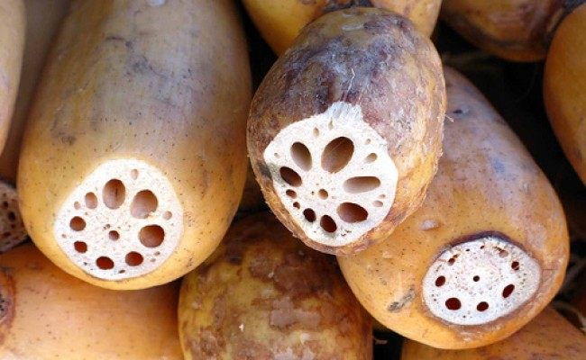 20-detoxifying-foods-lotus-root-jvumnFlickr-650x400