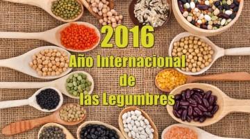 2016-ano-internacional-de-las-legumbres-1-360x200