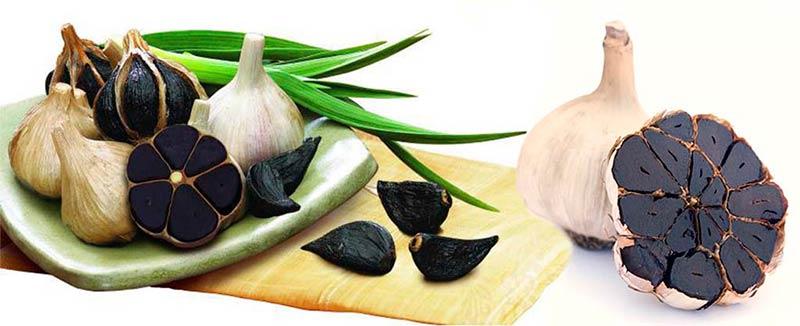 ajo-negro-y-sus-excelentes-propiedades-medicinales