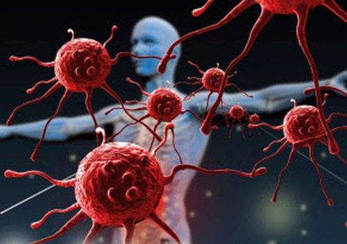 sistema-inmunologico-500x352