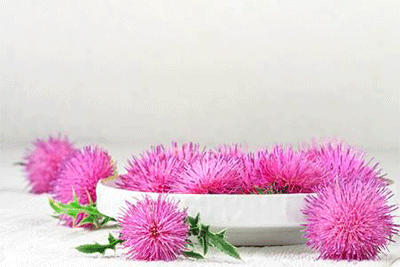 que-es-cardo-mariano-curcumina-casa-pia-herbolario-dietetica-online-planta-cardo