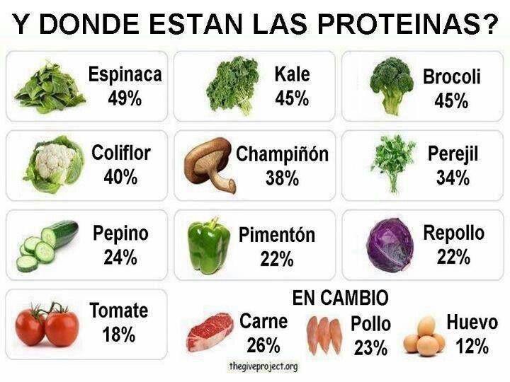 Dónde están las proteinas